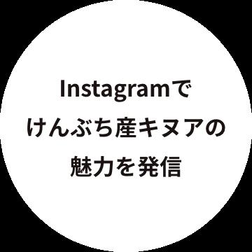 Instagramでけんぶち産キヌアの魅力を発信